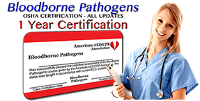 Learn More - Online Bloodborne Pathogens training class - 1 year certification. First time or renewal.