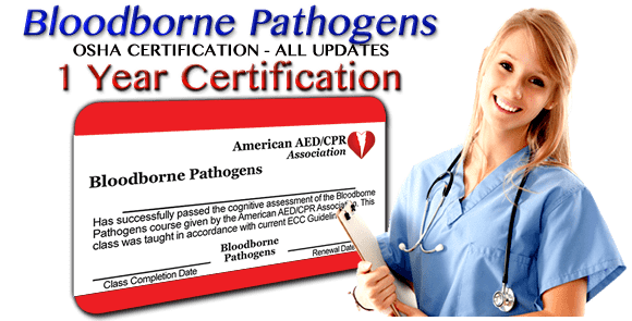 Online FBloodborne Pathogens training class - 1 year certification. First time or renewal.